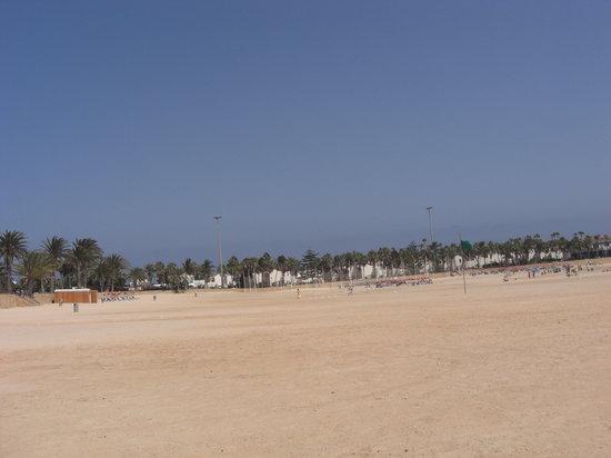 Fuerteventura Beach Club: The beach