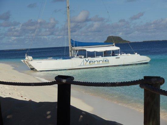 Palm Island Resort & Spa: Yannis snorkel trip - you gotta go.  Swam with sea turtles.