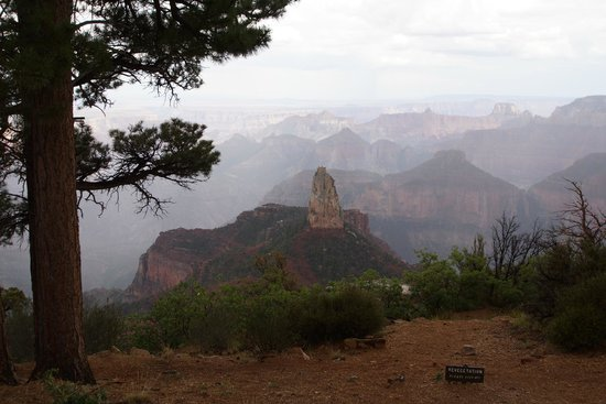 Misty morning view of the Grand Canyon North Rim