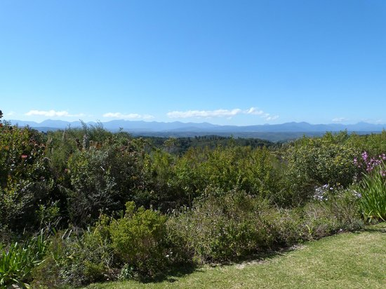 Fynbos Ridge Country House & Cottages : View of mountains
