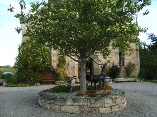 The Old Kirk: Deer sculpture and host
