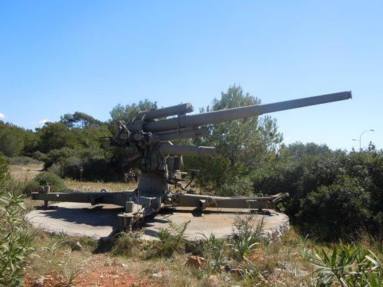 Castell de Sant Carles: Canon AA 88 mm
