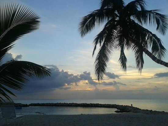 Sunset Cove: Beach