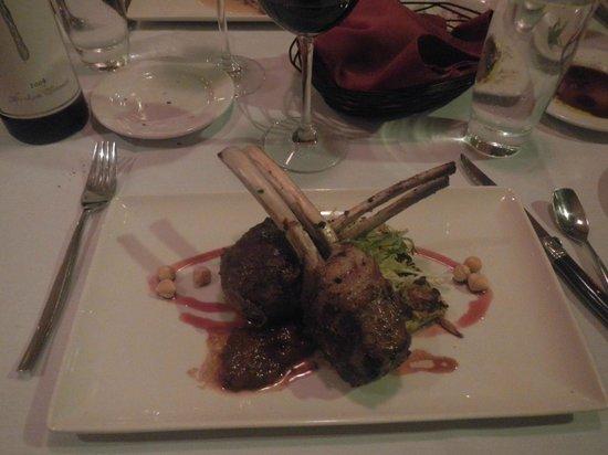 Taste : Colorado Lamb