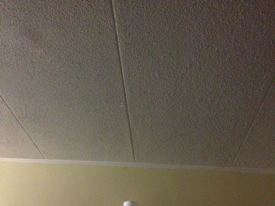 BEST WESTERN Franklin Inn: Ceiling