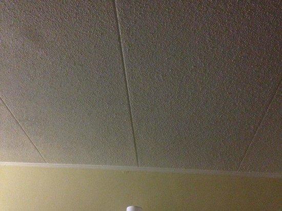 Best Western Franklin Inn: Ceiling