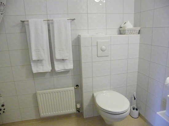 Hofsstadir Guesthouse: basic bathroom...