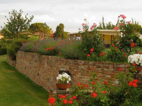 Agriturismo Il Belvedere : Il giardino