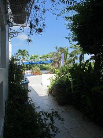 Hotel Mocking Bird Hill: Weg vom Zimmer zum Pool