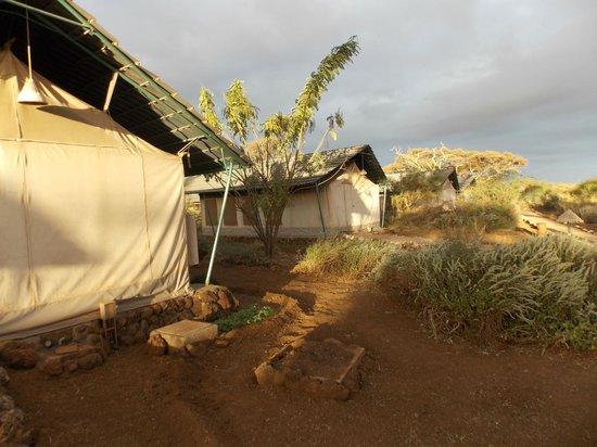 Sentrim Amboseli: Réveil en tentes à 7h