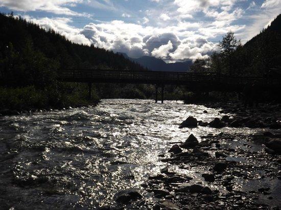 Best of Alaska Historic Gold Panning Adventure and Gold Creek Salmon Bake