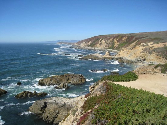 Bodega Head: Bodega Rock