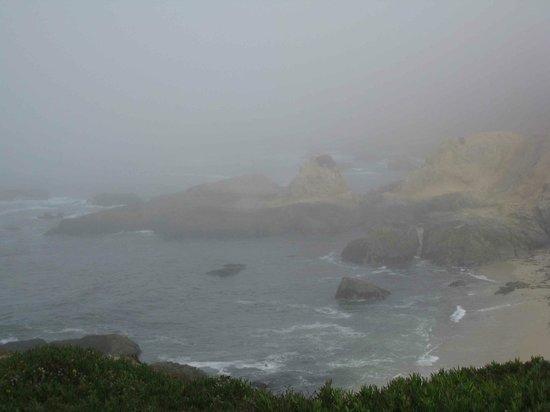 Bodega Head: Fog at Bodega Rock