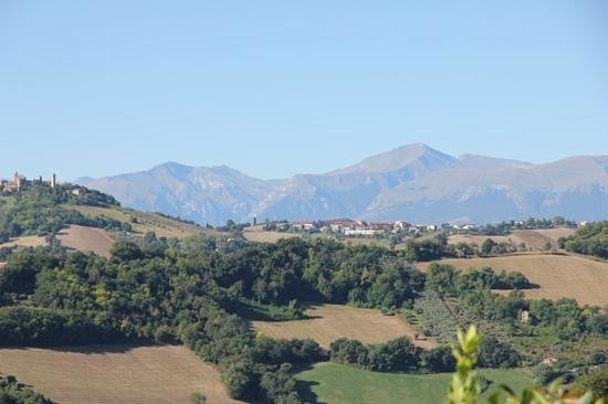 Casa San Ruffino : View from the house.