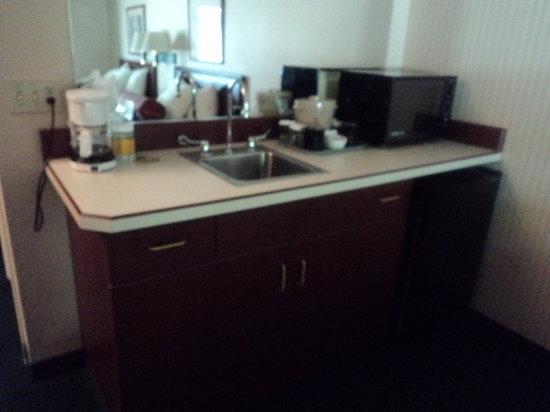 Rogue Regency Inn: One of the sink areas