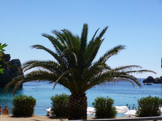Apollon Restaurant: Vue sur la plage depuis le restaurant