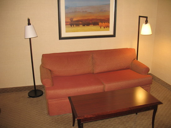 Holiday Inn Express Pullman : A tired couch