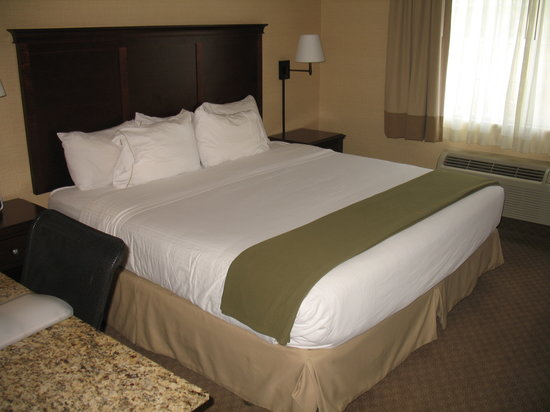 Holiday Inn Express Pullman : Comfortable bedroom