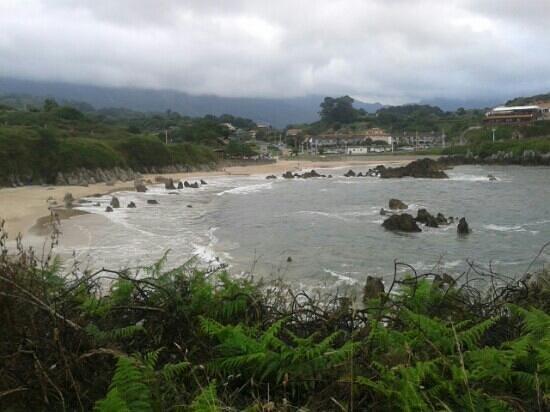 Playa de Toro: playa vista panoramica