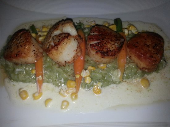 Lucia : Seared Atlantic Sea Scallops