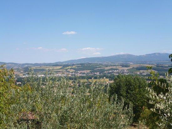 La Torriola: Aussicht von der Anlage ins Tal
