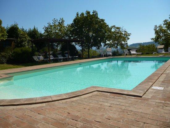 La Torriola: Pool (ca. 30m von den beiden Häusern entfernt)