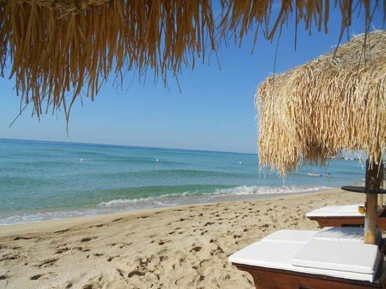 Angel Bay B&B Punta Prosciutto : spiaggia splendida e a due passi dal B&B