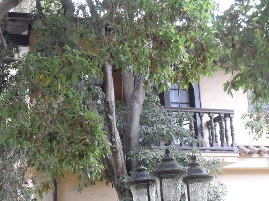 The Historic Santa Maria Inn: View of Marilyn Monroe's balcony