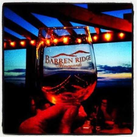 Barren Ridge Vineyards : Sunset in the Vineyard