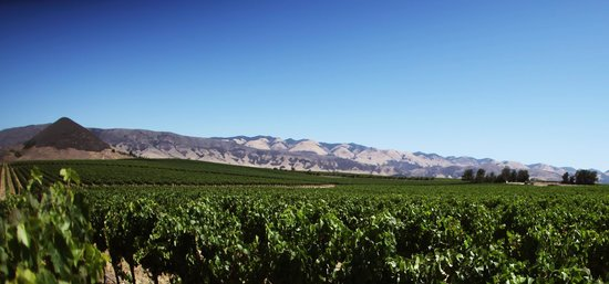 La Cuesta Inn : SLO Wine Country