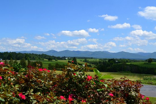 CrossKeys Vineyards: Views