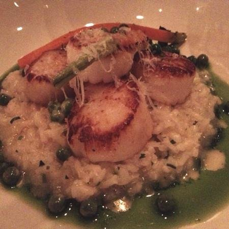 Seed Kitchen & Bar: Perfectly Cooked Scallops!