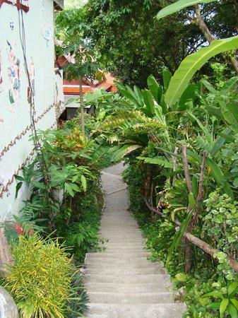 Bill Resort: сад на территории отеля