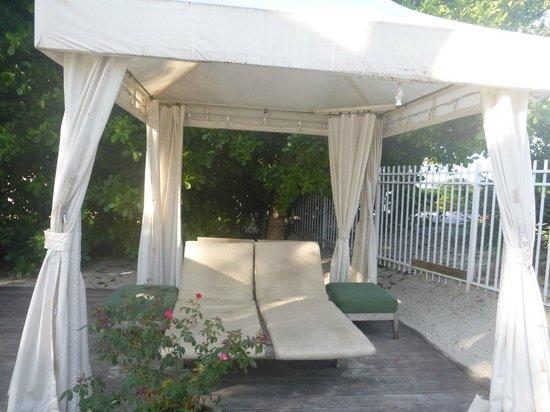South Seas Hotel: jardin