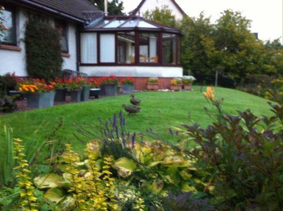 Glenshian Guesthouse: Glenshian