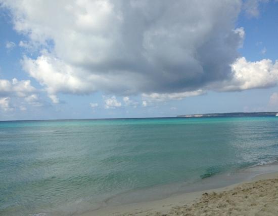 Playa Es Arenals: es arenals