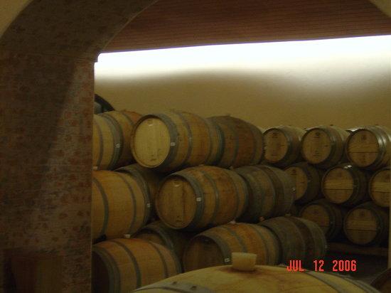 Concha y Toro Winery: Quer um pouco?