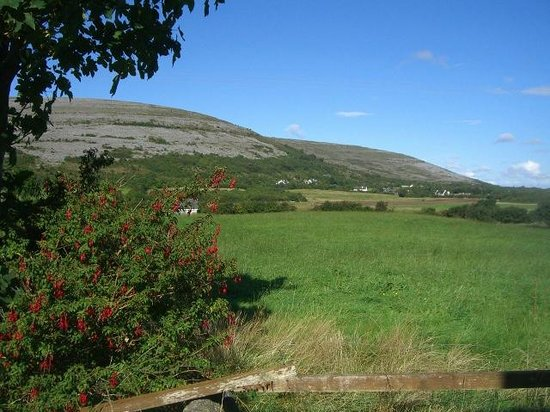 Cappabhaile House: Burren view - almost the view from our room