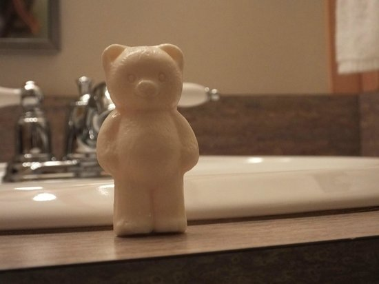 Canyon Lodge and Cabins: Cute little soap.