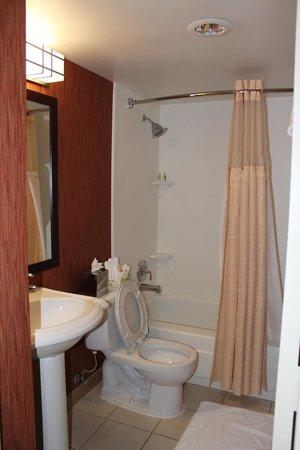 Holiday Inn Washington DC-Central/White House: Banheiro