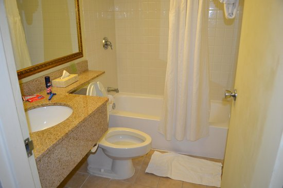 Holiday Inn Miami International Airport: bathroom