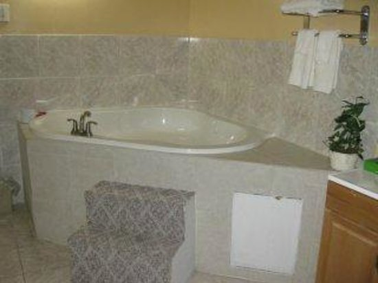 Country Hearth Inn & Suites Gainesville: Jacuzzi Suite