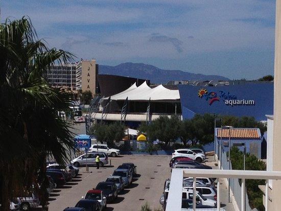 Hotel Sant Jordi: Palma aquarium 5 min à pied