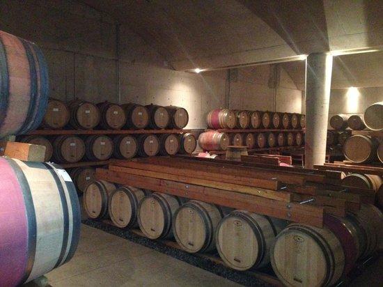 Grape Escape Wine Tours: barrels
