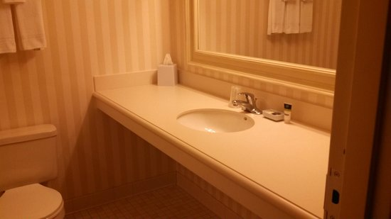 The Four Points by Sheraton Norwood Hotel & Conference Center: Bathroom sink