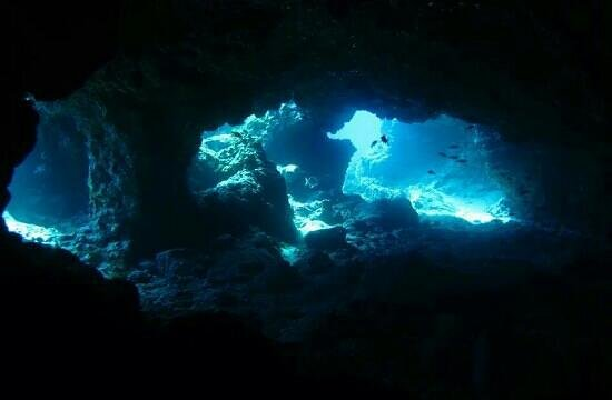 Atlantis Diving Lanzarote: la grotta!