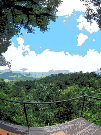 Villa Blanca Cloud Forest Hotel and Nature Reserve: View from the Villa Blanca grounds