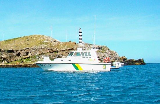 Parque Nacional Marinho de Abrolhos: Marinha