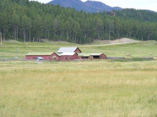 1880 Train/ Black Hills Central Railroad: farm along the way