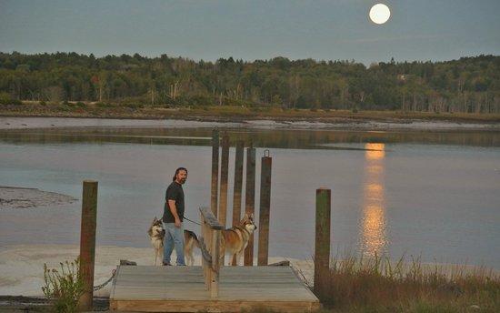 Machias River Inn: Full moon over Machias River